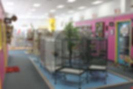 Image of The Bird Shoppe, LLC