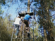 Fun-times-in-the-woods-356x267.jpg