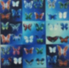 FarfalleSantoloDLIngr.jpg