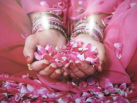 lotus petals.jpg