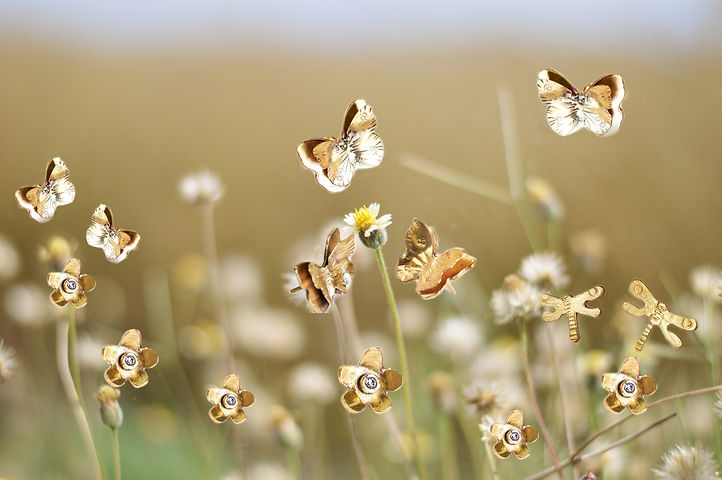 English Country Garden pexels-shashi-rup