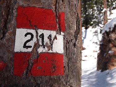 Sentiero 211