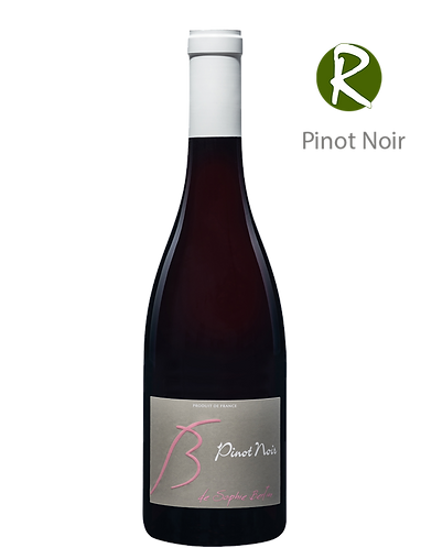 Pinot Noir 2019 - Domaine SOPHIE BERTIN - Vallée de la Loire VdF