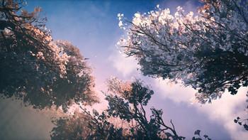 Alfheim_Foliage 2.jpg