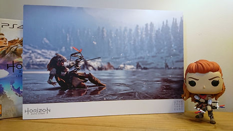 HZD Anniversary Giveaway Photo.JPG