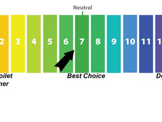 Neutral pH, why is 6 or 7 the magic number?