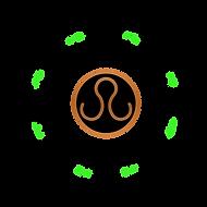 cirle-green-2-ram_instastories_transp_sh_edited.png