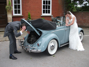 weddingbeetle breakdown