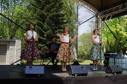 _Konschtfestival_ à Steinfort Luxembourg
