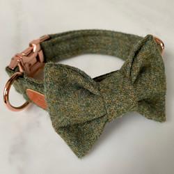 herringbone dog collar with bow