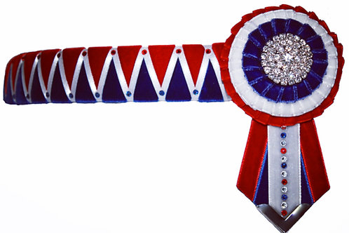 The Taylor Browband