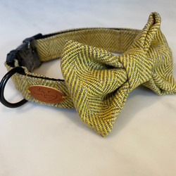 Tweed Grey and yellow dog collar