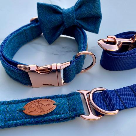 aqua dog collar