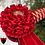 Thumbnail: The Halton Browband