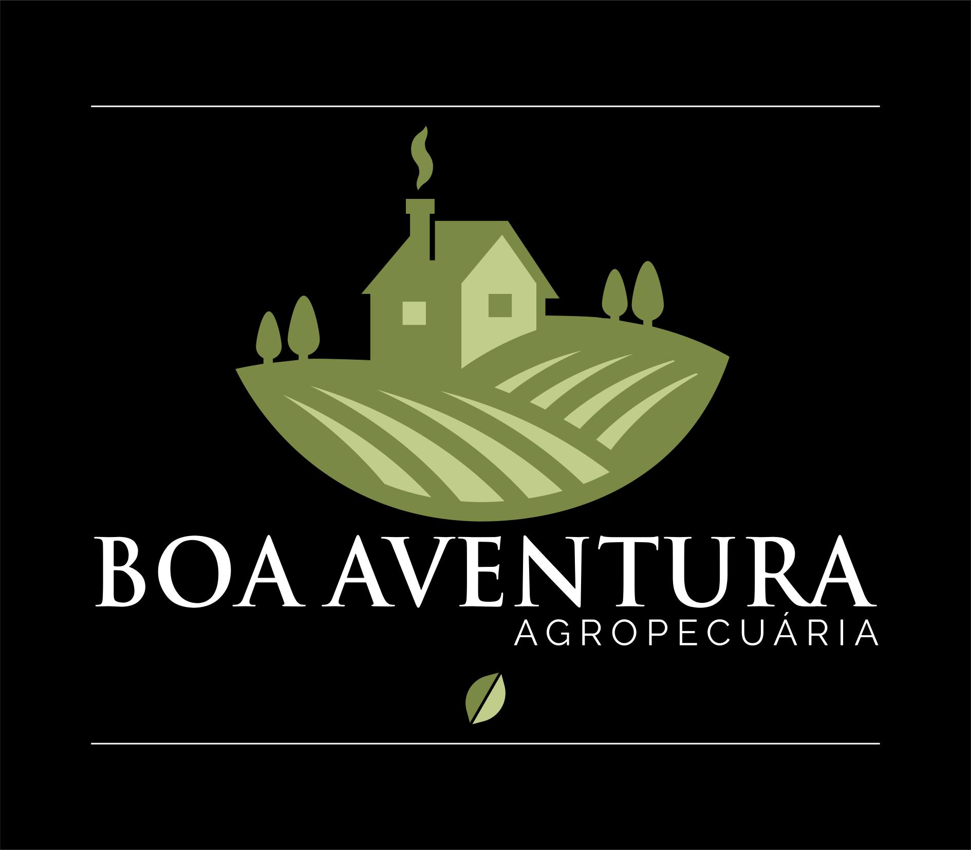 +Branding - Boa Aventura