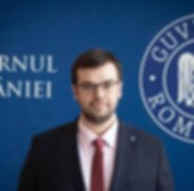 Radu Nicolescu Consilier de stat la Canc