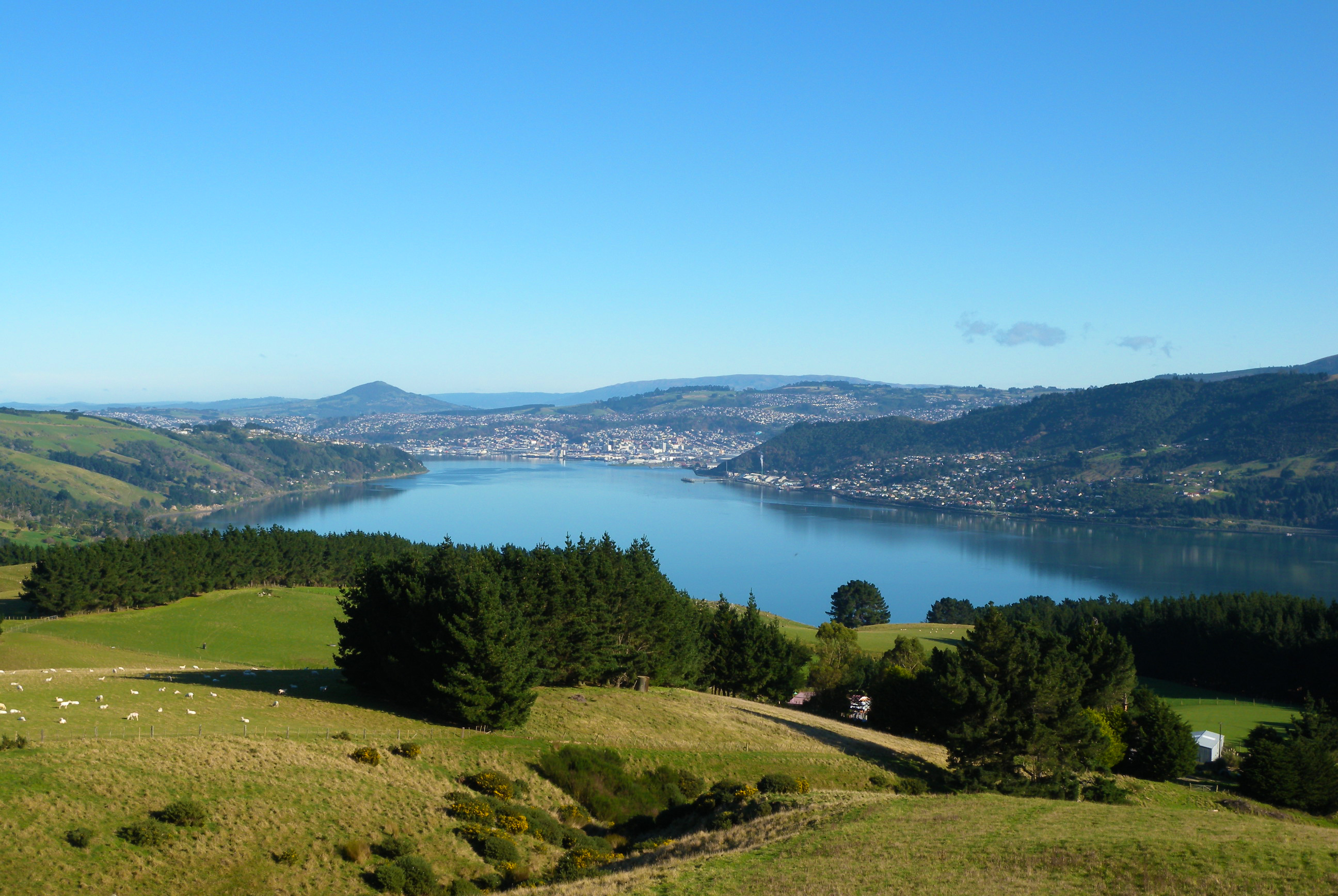 Spectacular Scenery of Dunedin