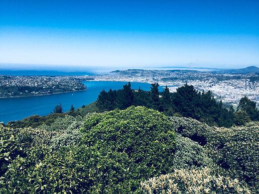 Breathtaking panorama over Dunedin