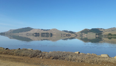 Willdlife on Hoopers Inlet