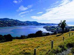 Otago Harbour Scenery