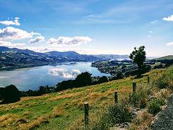 Otago Peninsula.jpg