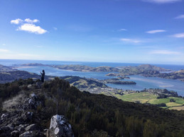 Otago Harbour views from Mt Cargill