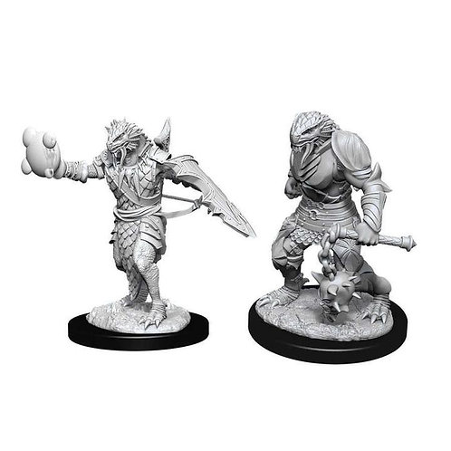 Dungeons & Dragons Nolzur's Marvelous Miniatures - Dragonborn Male Paladin