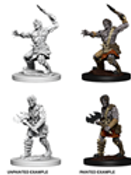Dungeons & Dragons Nolzur's Marvelous Miniatures - Nameless one
