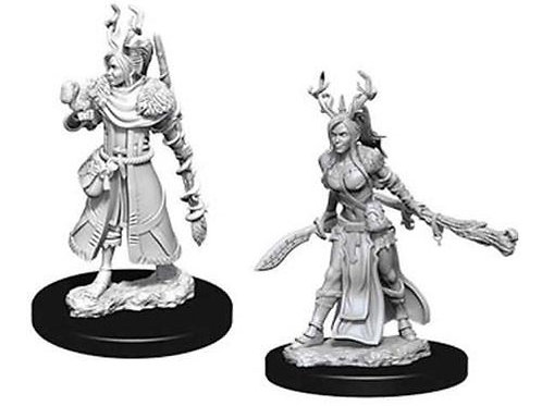 Dungeons & Dragons Nolzur's Marvelous Miniatures - Human Female Druid