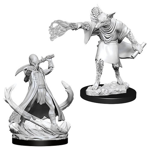 Dungeons & Dragons Nolzur's Marvelous Miniatures -Arcanaloth & Ultroloth