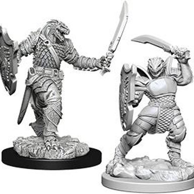 Dungeons & Dragons Nolzur's Marvelous Miniatures - Dragonborn Female Paladin