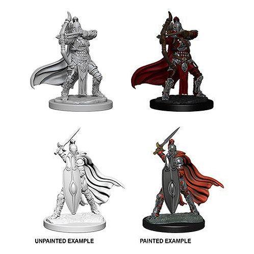 Pathfinder Deep Cuts - Female Knight/ Gray Maiden