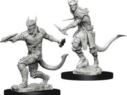 Dungeons & Dragons Nolzur's Marvelous Miniatures - Tiefling Male Rogue