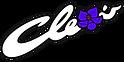 AC - Logo - Word-BIG 419 large.png