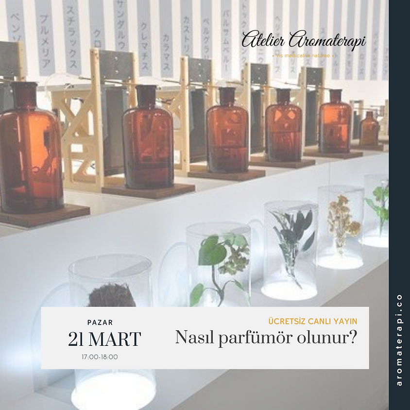 Nasıl parfümör olunur?