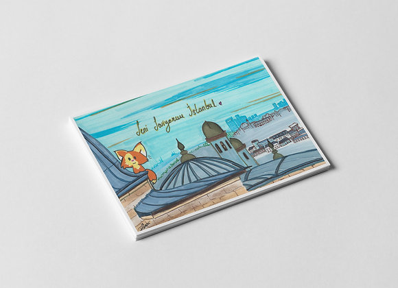 İstanbul Kedileri: Topkapı Sarayı Kartpostal