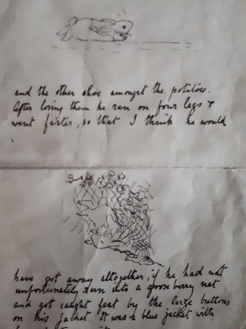 Beatrix Potter'ın Peter Rabbit Mektubu