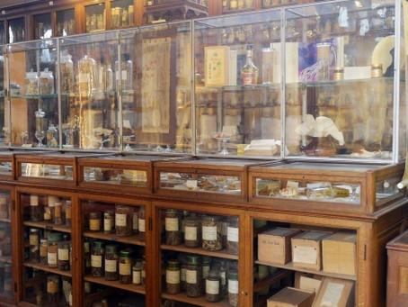 Musée François Tillequin'nin Osmanlı'dan Kalma Bitki Hazineleri