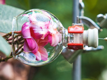 Parfüm Teknolojileri: Headspace