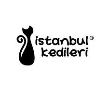Cats of Istanbul.jpg