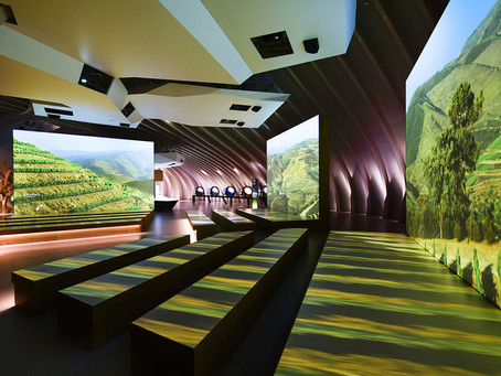 La Cité du Vin Opens in the Bordeaux Wine Region