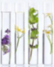 aromatherapy-science.jpg