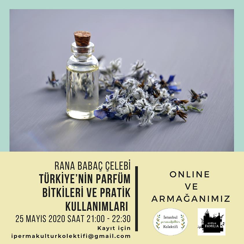 Türkiye'nin Parfüm Bitkileri & Pratik Kullanımları