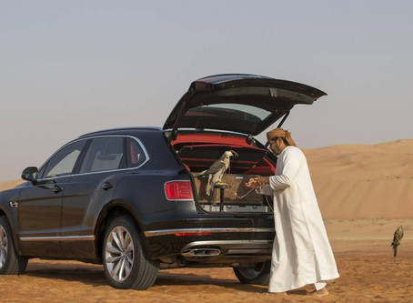 Bentley Knows About  Localisation | Meet Bentayga Falconry