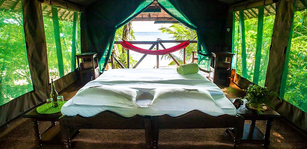 Photo Credit: Masoala Forest Lodge