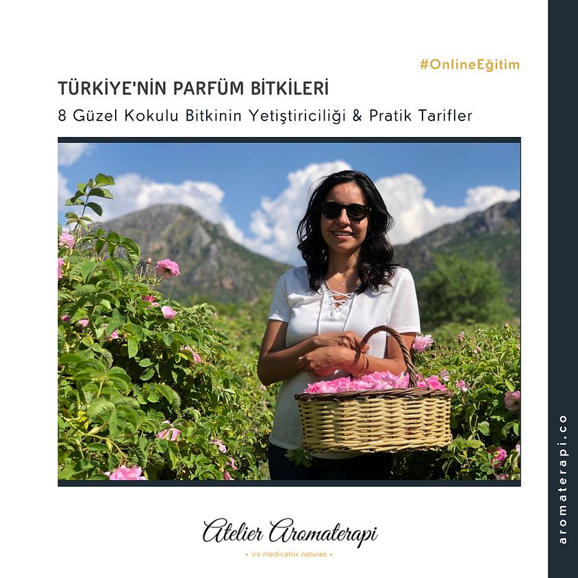 Türkiye'nin Parfüm Bitkileri & Pratik Tarifler