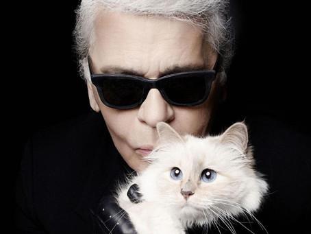 Karl Lagerfeld'in Kedisinin Peluş Oyuncağını Yaptılar