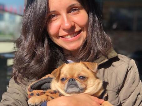 Köpekler & Aromaterapi