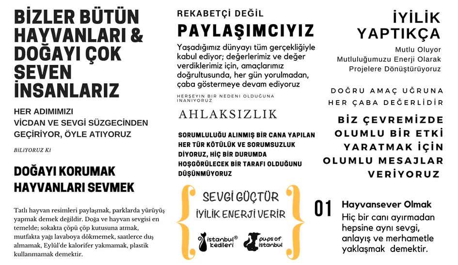 İstanbul Kedileri Manifestosu.png