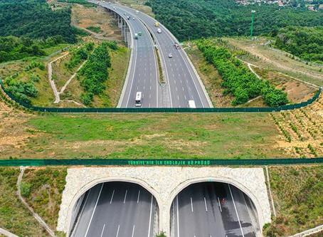 Türkiye'nin Ekolojik Köprüleri